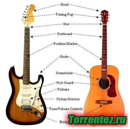 Самоучитель игры на гитаре торрент